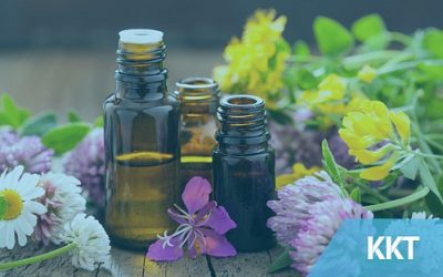 Essential Oils and Their Powers to Heal Pain