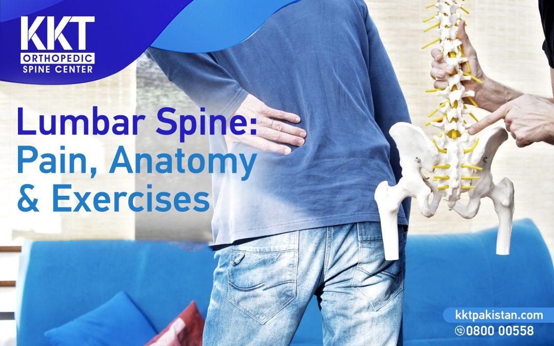 Lumbar Spine: Pain, Anatomy & Exercises